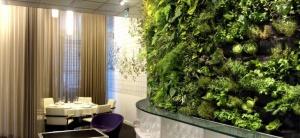 Фитостены-новый тренд в дизайне квартир