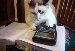 Что такое симоронский калькулятор желаний?