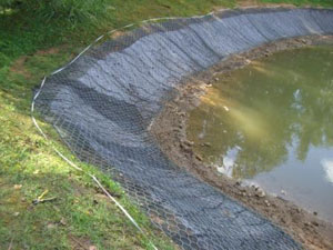 Как укрепить берег водоема?