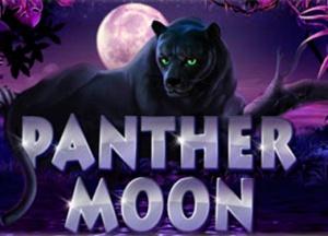 Игровой слот «Пантера». Как обыграть?