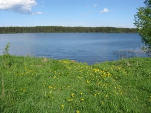 Роскошь современной жизни – участок на берегу озера